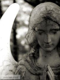 San Damiano Angel