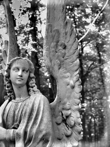 DSC01988 Duskflyer Angel in Woods b and w heavy