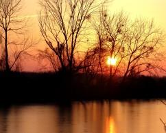 Sunset at Kincaid Indian Mounds