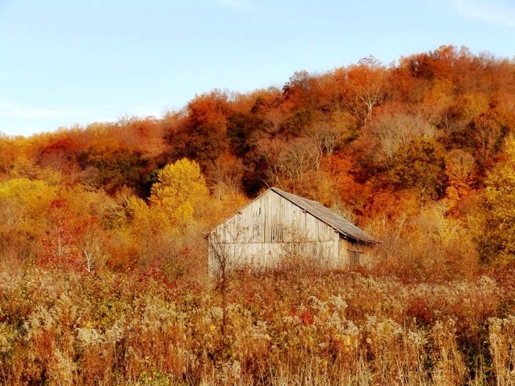 DSC04628 Indiana Barn.jpg