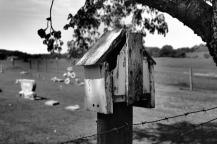Old Birdhouse at Cemetery