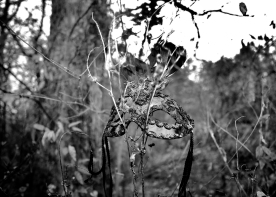 IMG_3025 Mask in the Forest bw