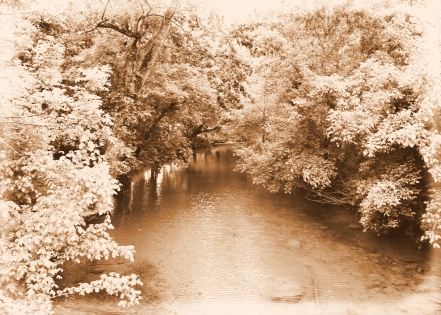 IMG_4510 Fall Creek 2
