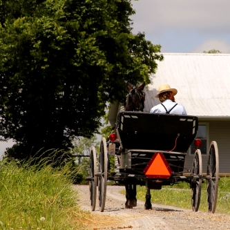 IMG_4521 Mennonite man