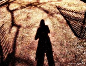 Shadows at Carnton Plantation