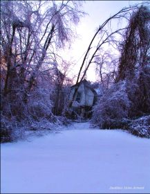 Winter Witch House