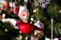 IMG_0331 Christmas Ornaments 2