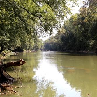 IMG_1704 Green River