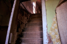 IMG_3461 GJA steps