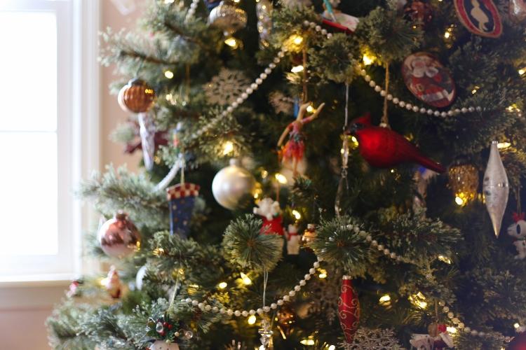 IMG_2898 Christmas Tree.jpg
