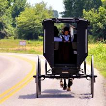 IMG_4653 Sweet Amish Child 2