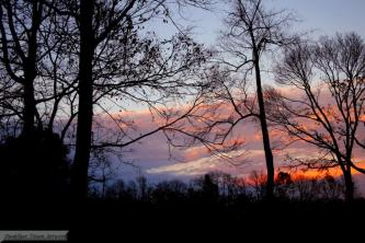IMG_3216 Witchy Sky