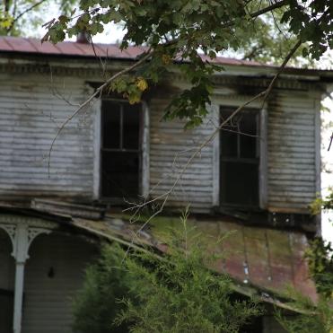 IMG_5257 Dark Windows and Pines