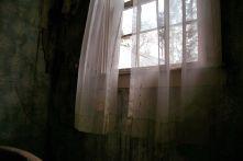 IMG_6350 Winter Window Dream
