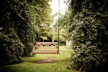 Photo by Rene Asmussen on Pexels.com
