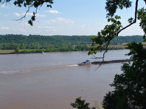 DSC04908 Ohio River