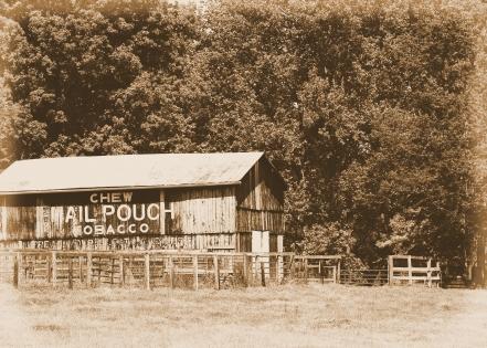 IMG_1078 old tobacco barn 2
