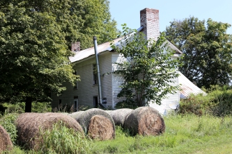 IMG_1461 Old place, hay and roses