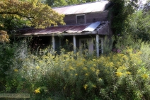 IMG_7402 The Secret Place w.
