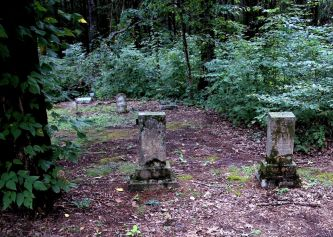 IMG_4954 Graves by the Forest
