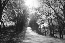 IMG_3526 road in dream