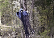IMG_2372 Ghoul hanging from tree