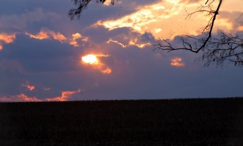IMG_1290 November sunset c