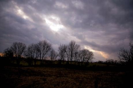 IMG_1779 Winter dusk field