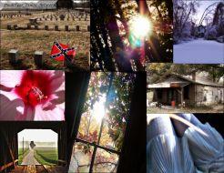 Collage for Franklin TN ArtScene