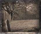 IMG_3370 Walnut Hill Cemetery 2