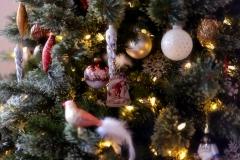 IMG_2640 Christmas Tree