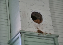 IMG_5833 Bird Nest in Chimney